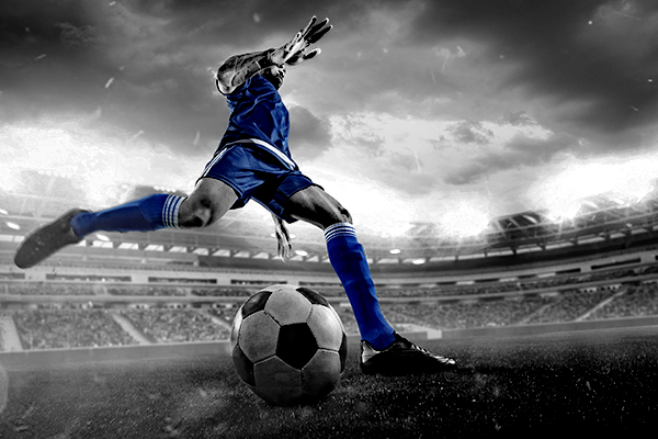 Introductory Certificate in Soccer Science and Performance course image
